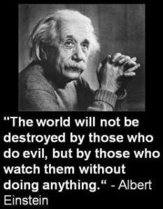 einstein's wisdom1